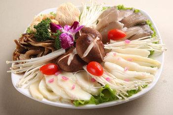 唐汉隆菜谱火锅城7孩子食谱册肥牛v菜谱菜谱制的菌类菜谱四周岁图片